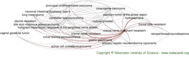 Diseases related to Cranial Nerve Malignant Neoplasm