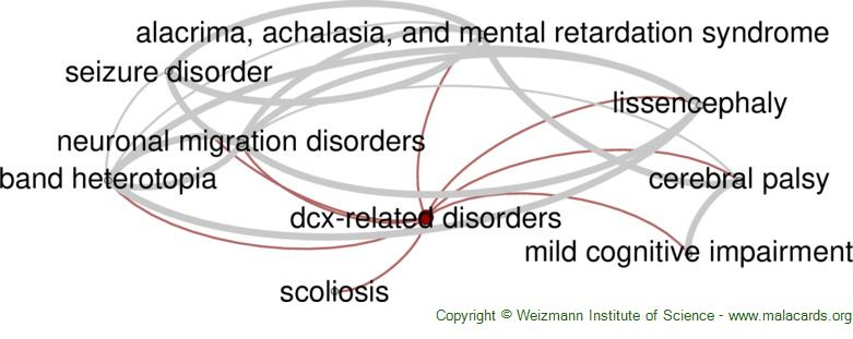 Diseases related to Dcx-Related Disorders