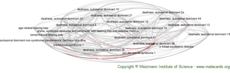 Diseases related to Deafness, Autosomal Dominant 28