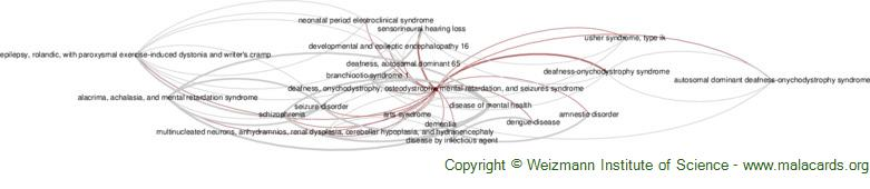 Diseases related to Deafness, Onychodystrophy, Osteodystrophy, Mental Retardation, and Seizures Syndrome