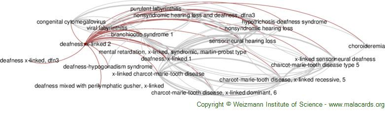 Diseases related to Deafness, X-Linked 2