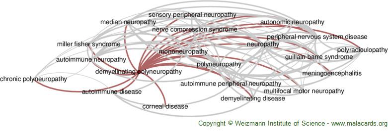 Diseases related to Demyelinating Polyneuropathy