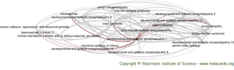 Diseases related to Developmental and Epileptic Encephalopathy 1