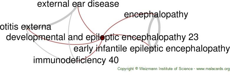 Diseases related to Developmental and Epileptic Encephalopathy 23