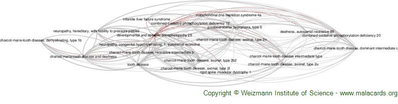 Diseases related to Developmental and Epileptic Encephalopathy 29