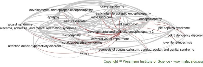 Diseases related to Developmental and Epileptic Encephalopathy 2
