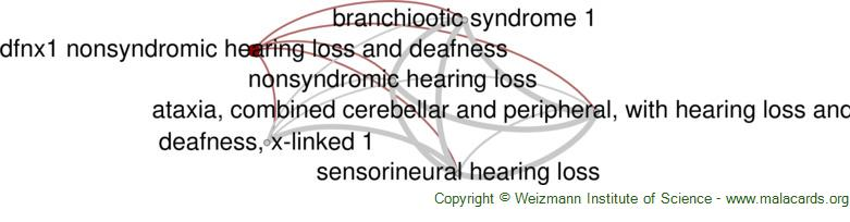 Diseases related to Dfnx1 Nonsyndromic Hearing Loss and Deafness
