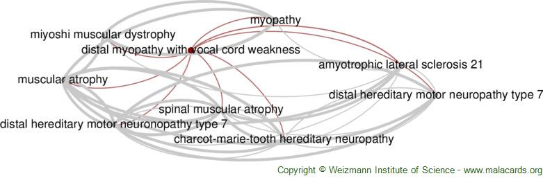 Diseases related to Distal Myopathy with Vocal Cord Weakness