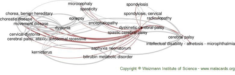 Diseases related to Dyskinetic Cerebral Palsy