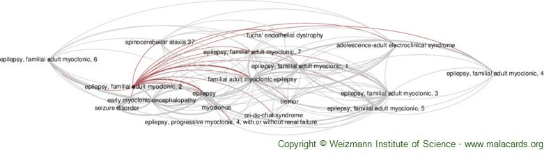 Diseases related to Epilepsy, Familial Adult Myoclonic, 2