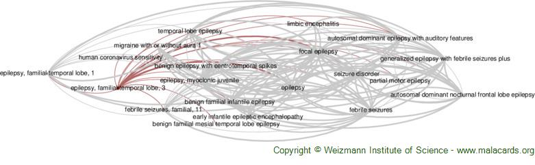 Diseases related to Epilepsy, Familial Temporal Lobe, 3