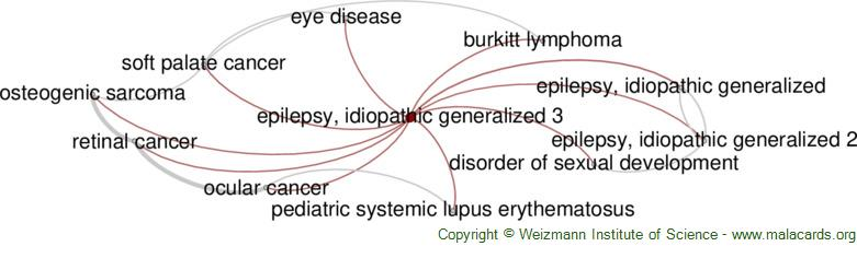 Diseases related to Epilepsy, Idiopathic Generalized 3