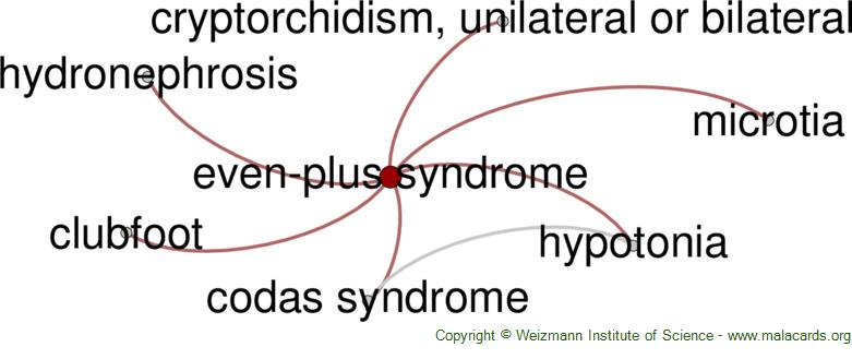 Diseases related to Even-Plus Syndrome