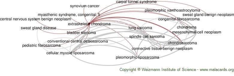 Diseases related to Extraskeletal Chondroma