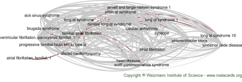 Diseases related to Familial Atrial Fibrillation