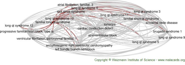 Diseases related to Familial Long Qt Syndrome