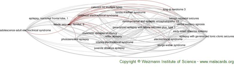 Diseases related to Febrile Seizures, Familial, 6