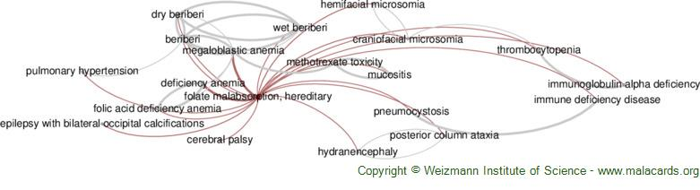 Diseases related to Folate Malabsorption, Hereditary
