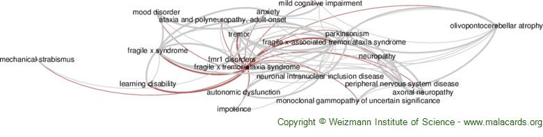 Diseases related to Fragile X Tremor/ataxia Syndrome