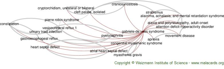 Diseases related to Gabriele-De Vries Syndrome