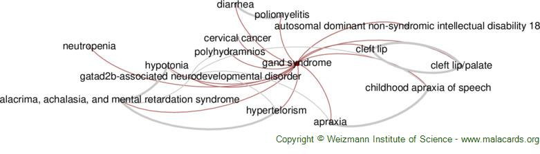 Diseases related to Gand Syndrome