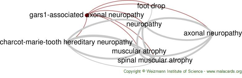 Diseases related to Gars1-Associated Axonal Neuropathy