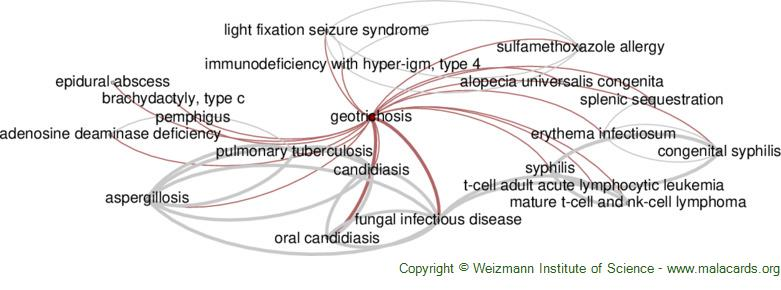 Diseases related to Geotrichosis
