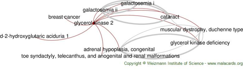 Diseases related to Glycerol Kinase 2
