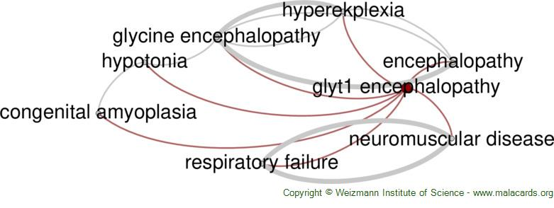 Diseases related to Glyt1 Encephalopathy