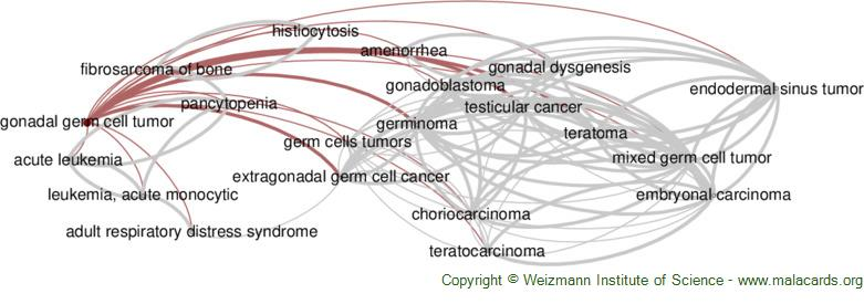 Diseases related to Gonadal Germ Cell Tumor