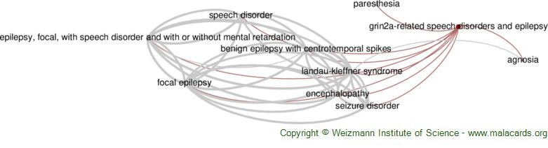 Diseases related to Grin2a-Related Speech Disorders and Epilepsy