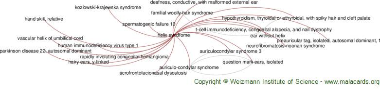 Diseases related to Helix Syndrome