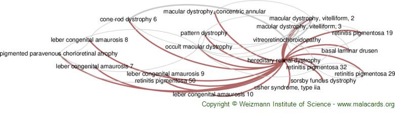 Diseases related to Hereditary Retinal Dystrophy