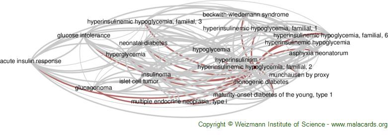 Diseases related to Hyperinsulinemic Hypoglycemia, Familial, 2