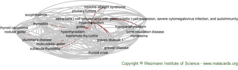 Diseases related to Hyperthyroidism