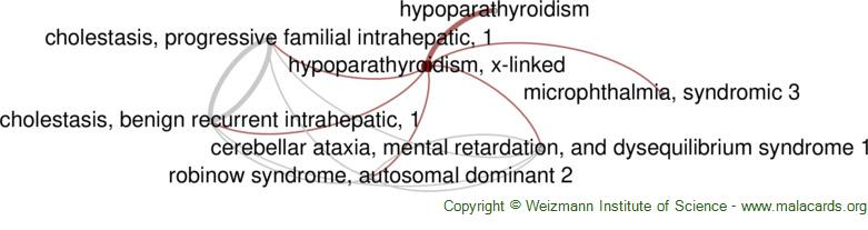 Diseases related to Hypoparathyroidism, X-Linked