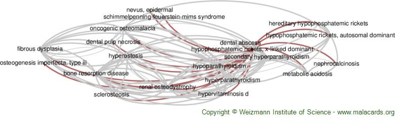 Diseases related to Hypophosphatemic Rickets, X-Linked Dominant