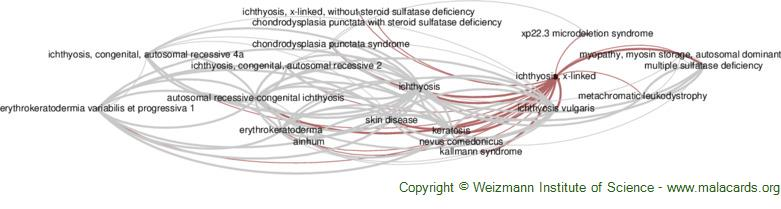 Diseases related to Ichthyosis, X-Linked