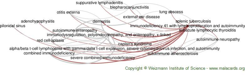 Diseases related to Immunodeficiency 41 with Lymphoproliferation and Autoimmunity