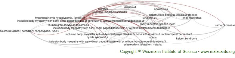 Diseases related to Inclusion Body Myopathy with Early-Onset Paget Disease of Bone with or Without Frontotemporal Dementia 2