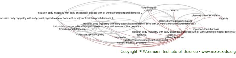 Diseases related to Inclusion Body Myopathy with Early-Onset Paget Disease with or Without Frontotemporal Dementia 1