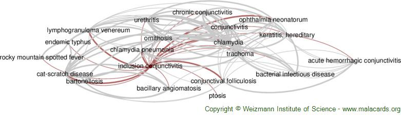 Diseases related to Inclusion Conjunctivitis
