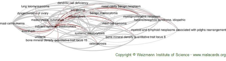 Diseases related to Indolent Systemic Mastocytosis