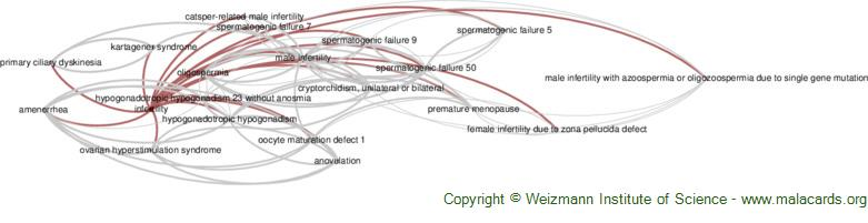 Diseases related to Infertility