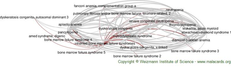 Diseases related to Inherited Bone Marrow Failure Syndromes