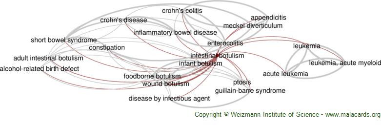 Diseases related to Intestinal Botulism