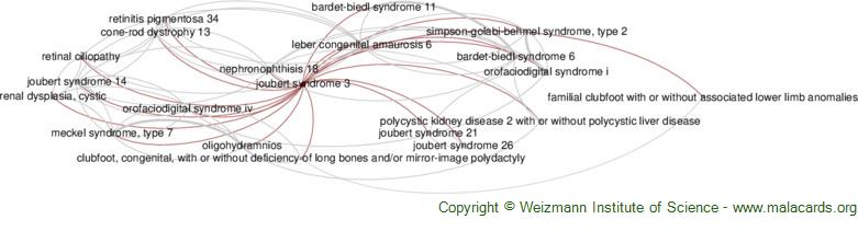 Diseases related to Joubert Syndrome 3