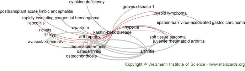 Diseases related to Kashin-Beck Disease