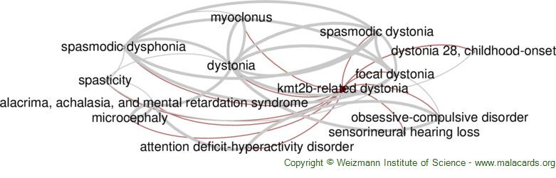 Diseases related to Kmt2b-Related Dystonia