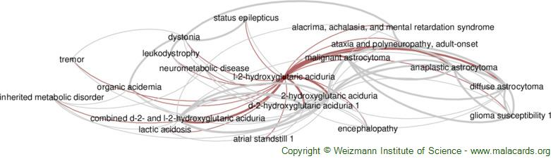 Diseases related to L-2-Hydroxyglutaric Aciduria